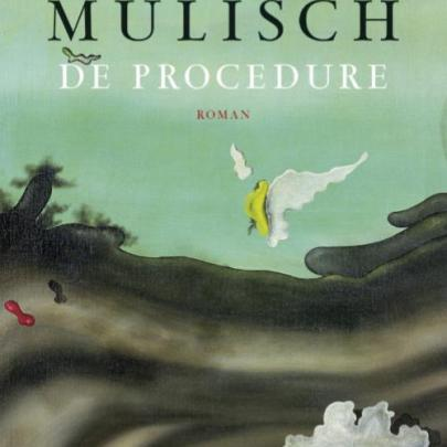 Book cover De procedure